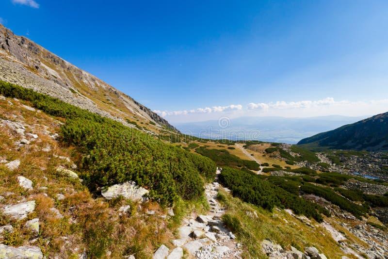 Paisaje eslovaco de Tatra del dolina de Furkotska foto de archivo
