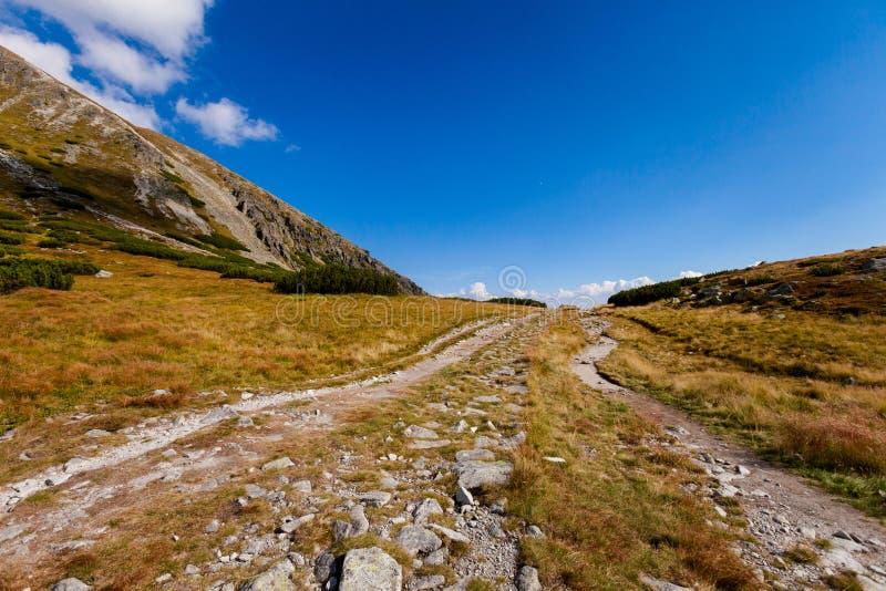 Paisaje eslovaco de Tatra del dolina de Furkotska imagen de archivo