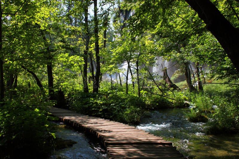 Paisaje espectacular en el parque nacional de Plitvice imagen de archivo libre de regalías