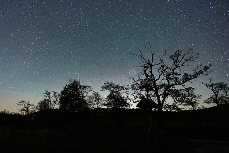 Paisaje estrellado del cielo imagen de archivo
