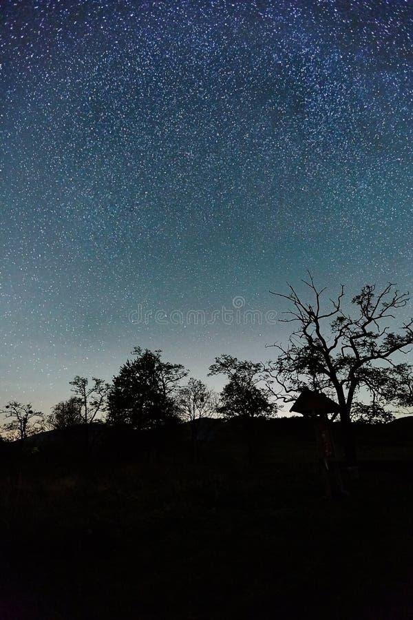 Paisaje estrellado del cielo foto de archivo
