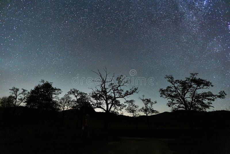 Paisaje estrellado del cielo fotos de archivo libres de regalías