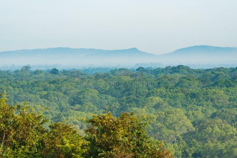 Paisaje expansivo de la selva tropical en Camboya Niebla y niebla debajo de la colina y cordillera en el horizonte fotos de archivo libres de regalías