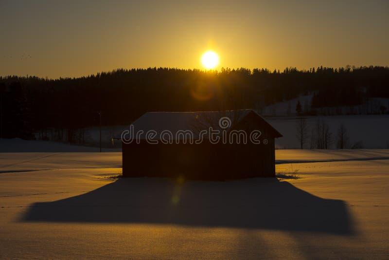 Paisaje finlandés del invierno con puesta del sol amarilla foto de archivo libre de regalías