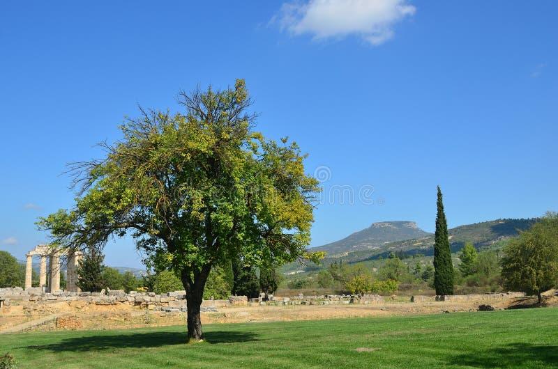 Paisaje griego cerca de Nemea, Peloponeso, Grecia fotografía de archivo