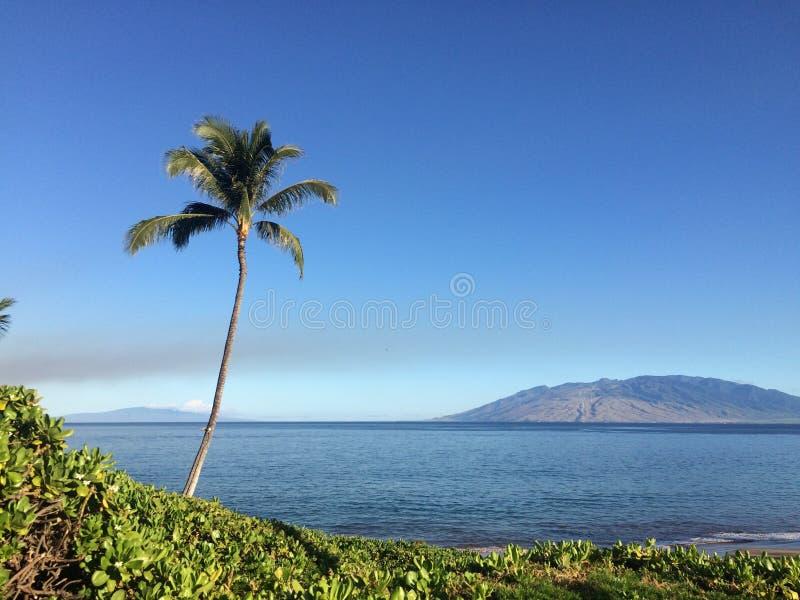 Paisaje hawaiano imagenes de archivo