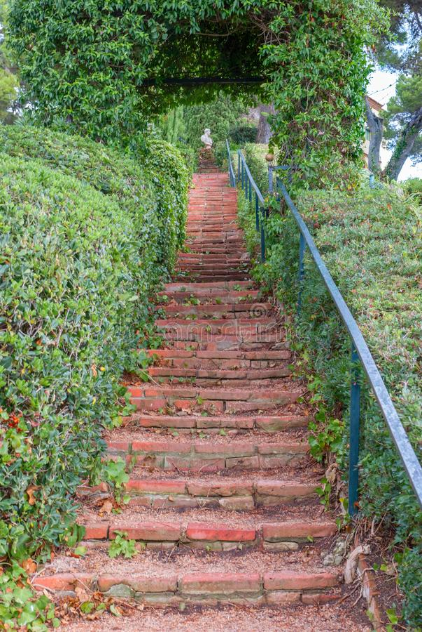Paisaje hermoso con decorativo cubierto con la escalera de paso de la hiedra en el jardín fotos de archivo