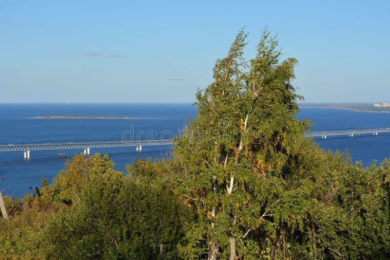 Paisaje hermoso con el puente sobre el r?o Volga y los ?rboles de abedul en primero plano fotografía de archivo libre de regalías