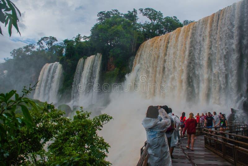 Paisaje hermoso con la cascada Cascadas de Iguazu, la Argentina Sitio del patrimonio mundial de la UNESCO imagen de archivo libre de regalías