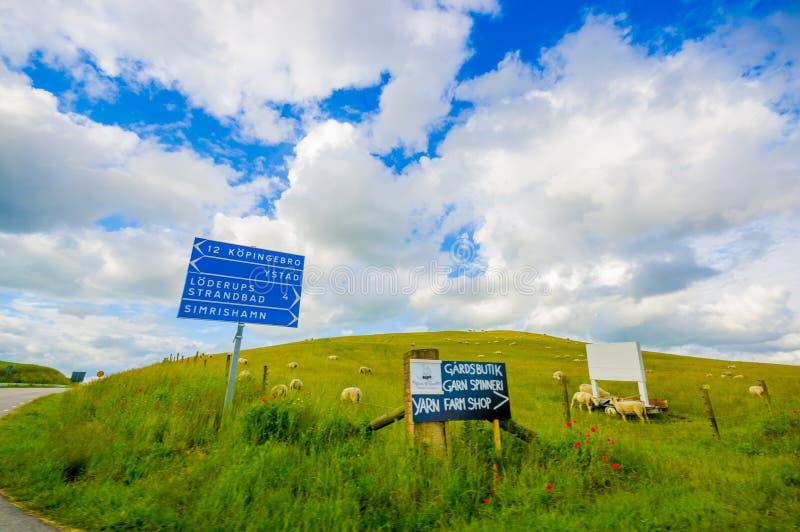 Paisaje hermoso con la granja de la colina y de las ovejas foto de archivo