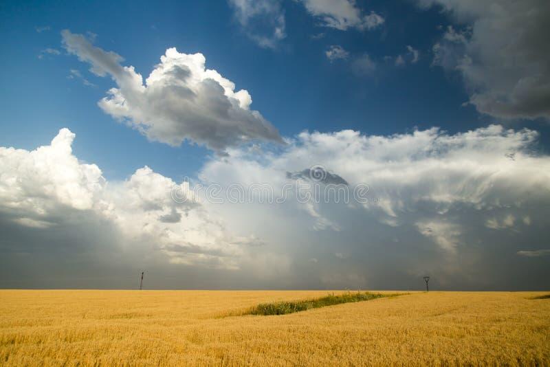 Paisaje hermoso con las nubes en el cielo foto de archivo
