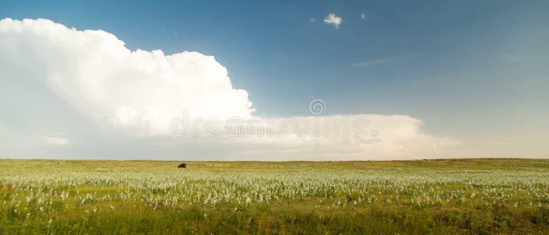 Paisaje hermoso con las nubes en el cielo fotografía de archivo