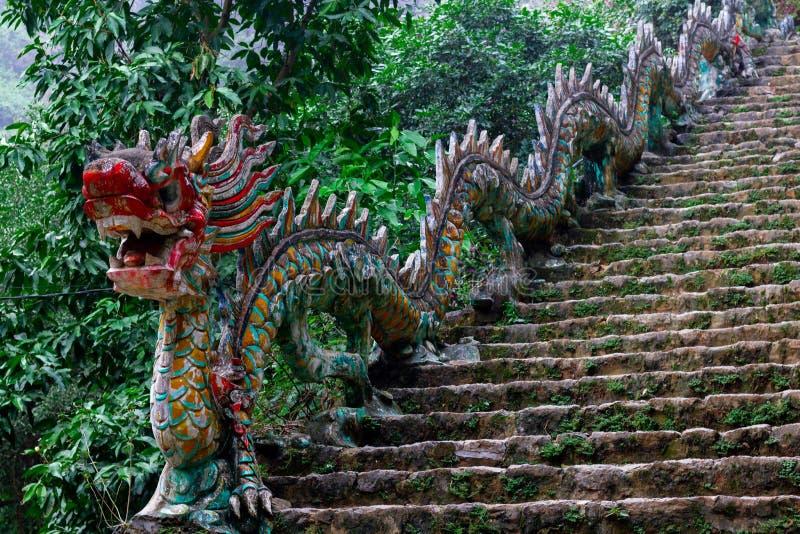 Paisaje hermoso con las rocas y los campos del arroz en Ninh Binh y Tam Coc en Vietnam imagenes de archivo