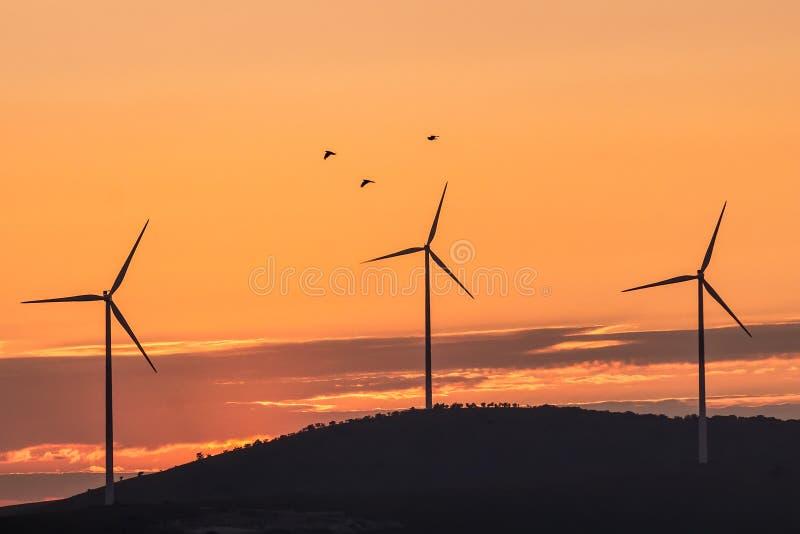 Paisaje hermoso con las siluetas de tres turbinas de viento en una colina en la luz y los pájaros de la puesta del sol fotos de archivo