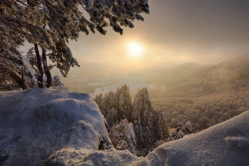 Paisaje hermoso con los árboles nevados, mou del invierno de Eslovaquia fotos de archivo