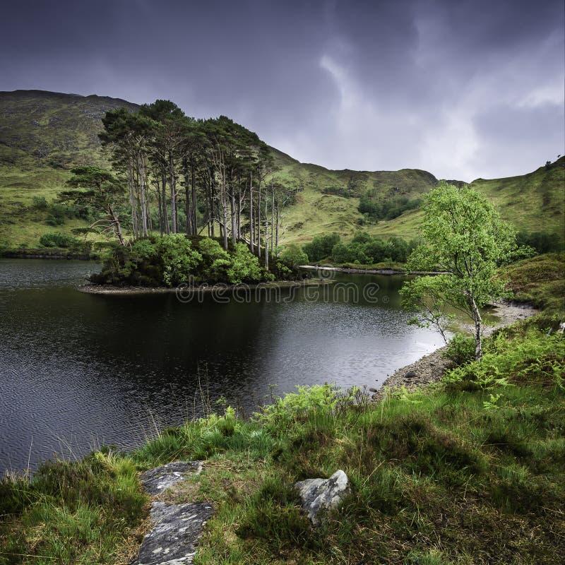 Paisaje hermoso de Escocia, Reino Unido Peque?a isla con los ?rboles de pino en el centro del lago imagenes de archivo