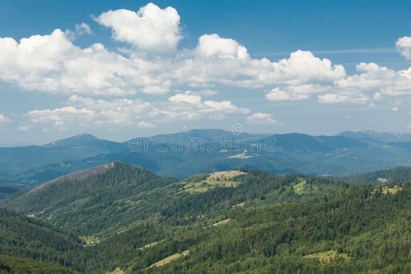 Paisaje hermoso de la montaña, colinas verdes C?rpato, Ucrania, Europa imagen de archivo libre de regalías