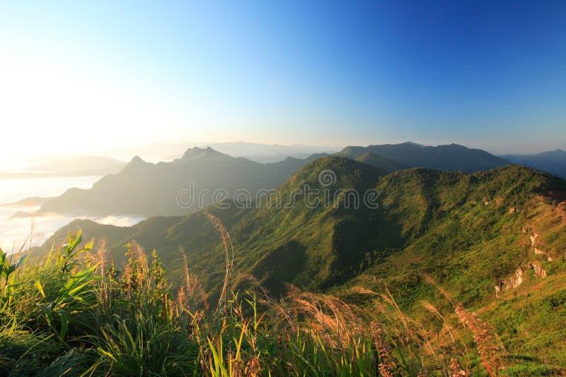 Paisaje hermoso de la montaña del Fa de la ji de Phu, Chiang Rai Thailand imagen de archivo libre de regalías