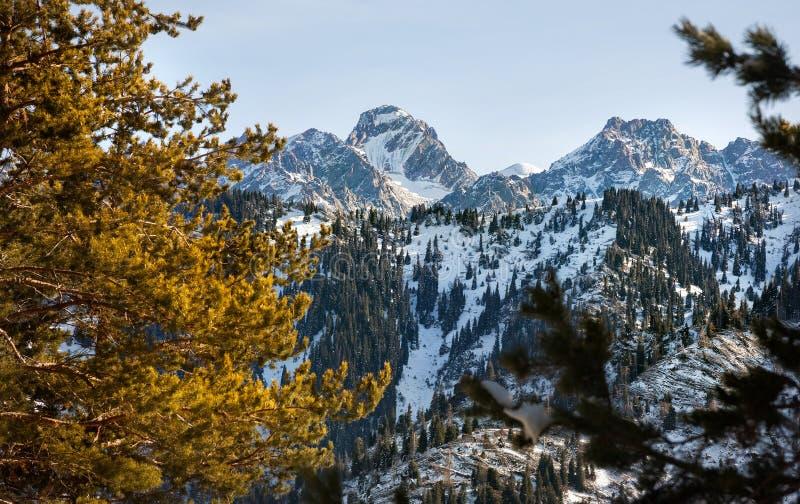 Paisaje hermoso de la montaña del invierno fotografía de archivo libre de regalías