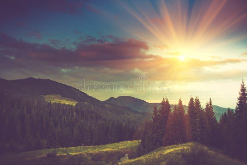 Paisaje hermoso de la montaña del verano en la sol foto de archivo libre de regalías