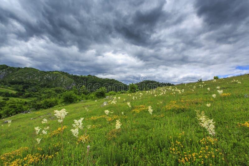 Download Paisaje Hermoso De La Montaña En Las Montañas Foto de archivo - Imagen de rocas, verde: 41917718