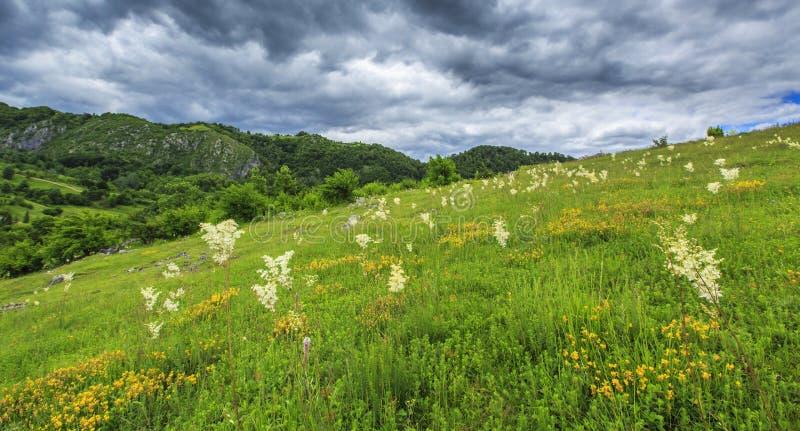 Download Paisaje Hermoso De La Montaña En Las Montañas Foto de archivo - Imagen de cielo, verde: 41917732
