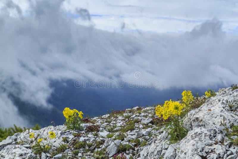Download Paisaje Hermoso De La Montaña En Las Montañas Foto de archivo - Imagen de alejado, travieso: 41917734