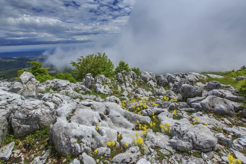 Download Paisaje Hermoso De La Montaña En Las Montañas Foto de archivo - Imagen de picos, pino: 41917824
