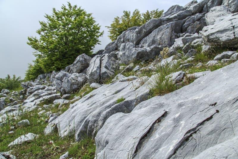 Download Paisaje Hermoso De La Montaña En Las Montañas Imagen de archivo - Imagen de transylvania, rumania: 41917845