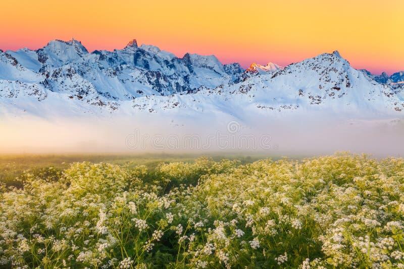 Paisaje hermoso de la montaña en la salida del sol brumosa Montan@as, Austria fotos de archivo libres de regalías
