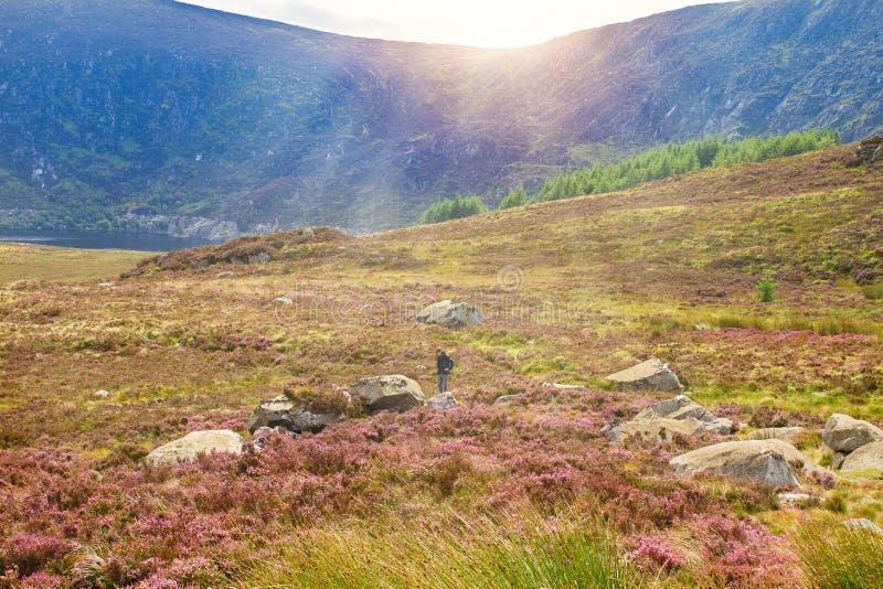 Paisaje hermoso de la montaña, paisaje Montañas parque nacional, condado Wicklow, Irlanda de Wicklow foto de archivo