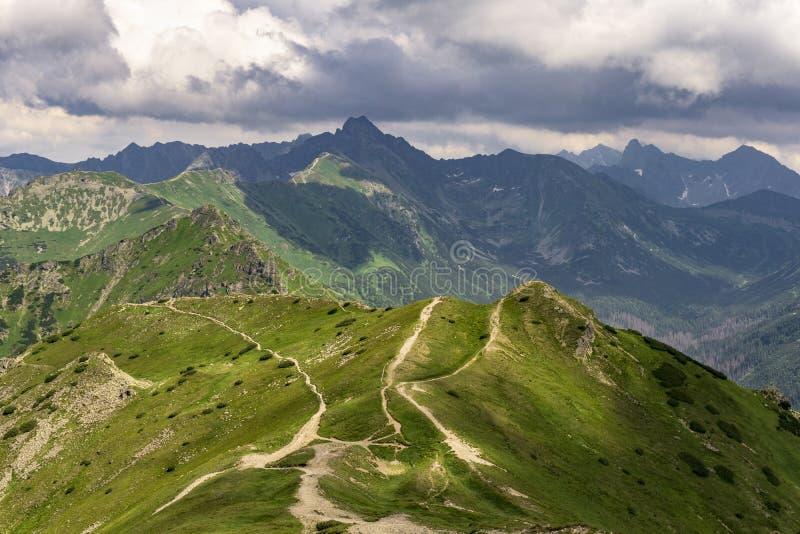 Paisaje hermoso de los grandes picos de montaña Montañas de Tatra fotos de archivo libres de regalías