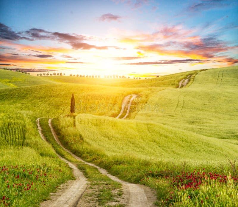 Paisaje hermoso de Toscana con la pista imagenes de archivo