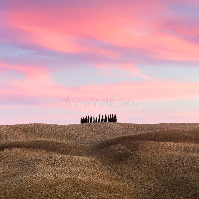 Paisaje hermoso de Toscana con las colinas y los cipreses en el ocaso fotos de archivo libres de regalías