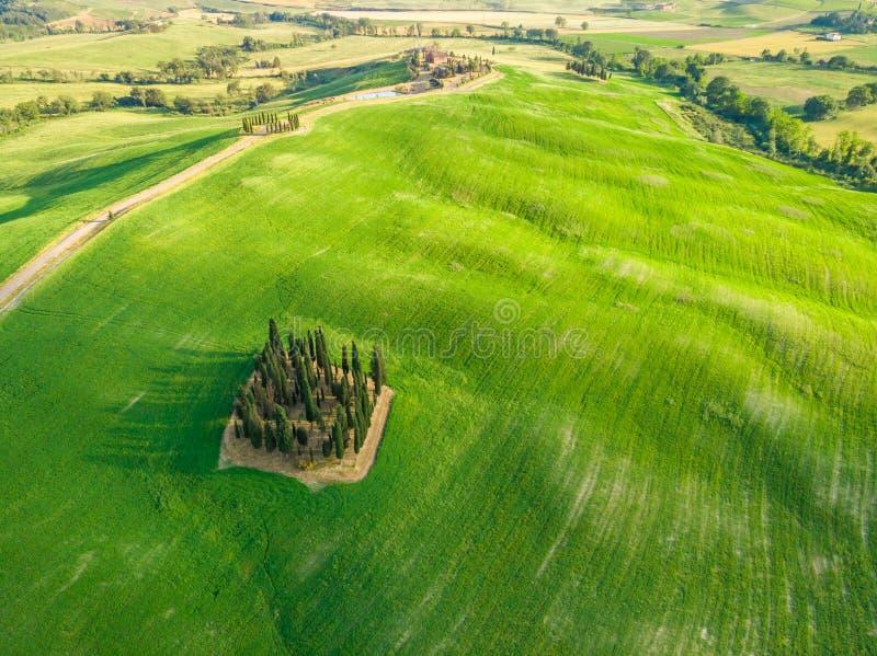 Paisaje hermoso de Toscana en Italia - grupo de cipreses italianos cerca del dÂ'Orcia de San Quirico - visión aérea - d'Orcia d imagenes de archivo