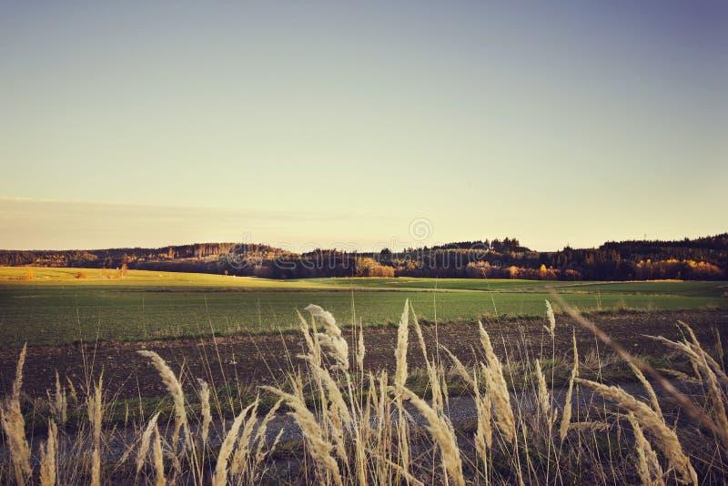 Paisaje hermoso del campo en puesta del sol en el tono del vintage imagenes de archivo