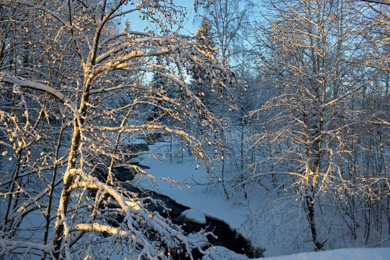 Paisaje hermoso del invierno cerca del río, mucha nieve, el sol imagen de archivo