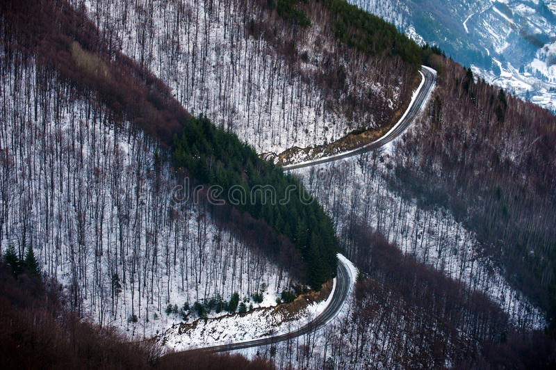 Paisaje hermoso del invierno con los árboles nevados imagenes de archivo