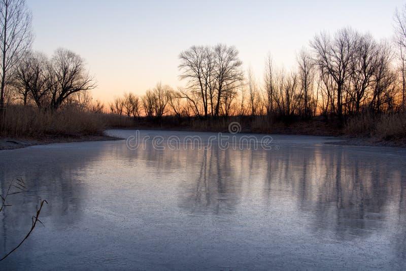 Paisaje hermoso del lago del bosque en la madrugada foto de archivo