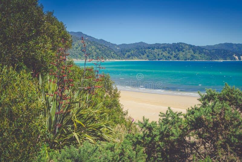 Paisaje hermoso del océano con la playa arenosa blanca, verdor suave de Nueva Zelanda imagen de archivo libre de regalías