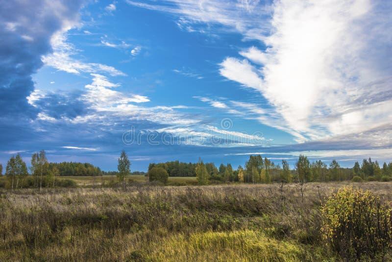 Paisaje hermoso del otoño con los campos, los bosques y los cielos nublados en la madrugada imagen de archivo