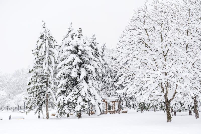 Paisaje hermoso del parque del invierno de Sofía, Bulgaria foto de archivo