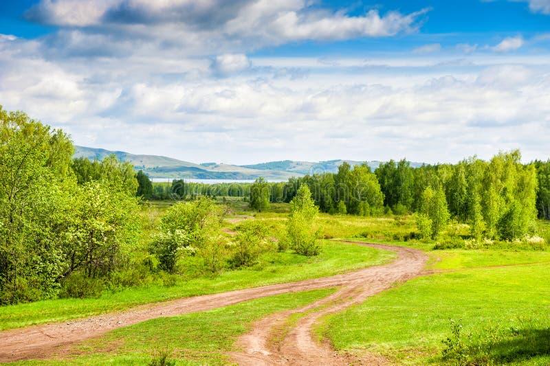 Paisaje hermoso del verano con el bosque y las montañas fotografía de archivo