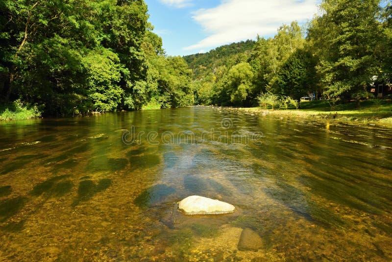 Paisaje hermoso del verano con el río, el bosque, el sol y los cielos azules Fondo natural imágenes de archivo libres de regalías