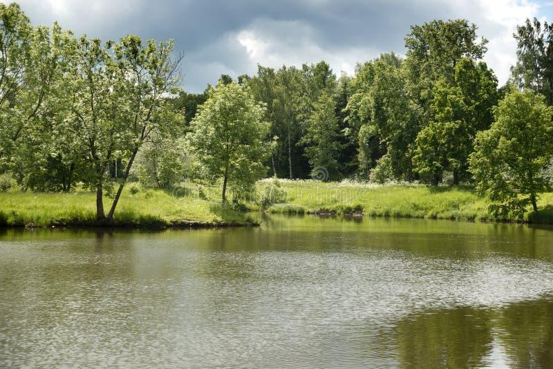 Paisaje hermoso del verano con los árboles en el banco del lago antes de una tempestad de truenos foto de archivo