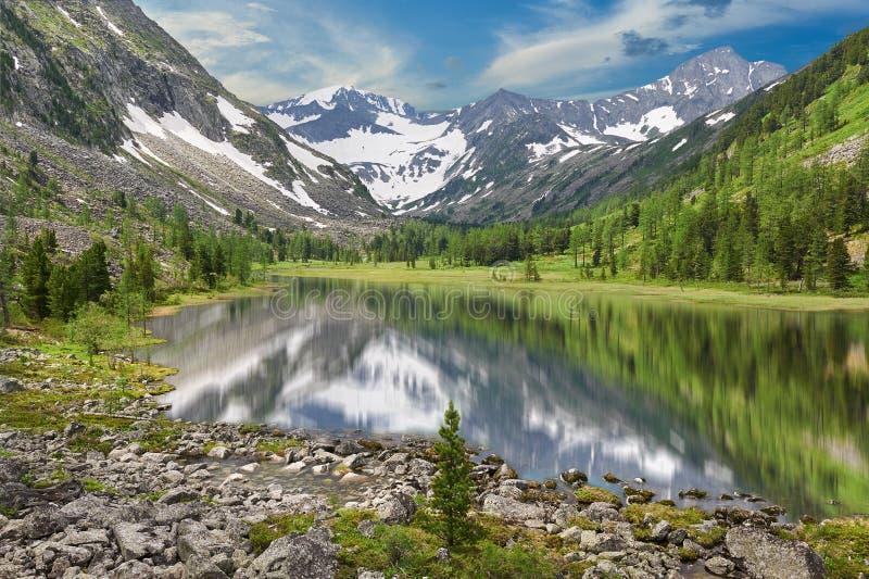 Paisaje hermoso del verano, montañas Rusia de Altai fotografía de archivo libre de regalías
