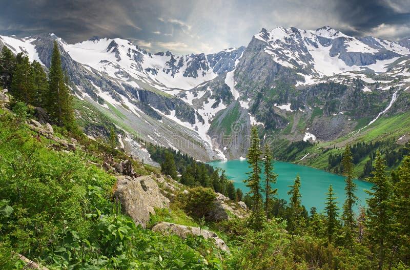 Paisaje hermoso del verano, montañas Rusia de Altai fotos de archivo