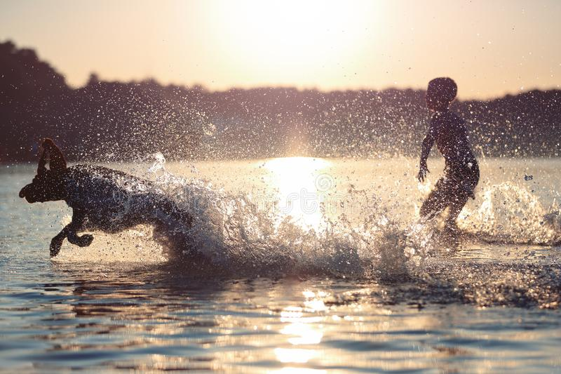 Paisaje hermoso del verano Un niño está jugando con un perro en el lago El agua salpica Puesta del sol Niñez feliz Escena brillan foto de archivo