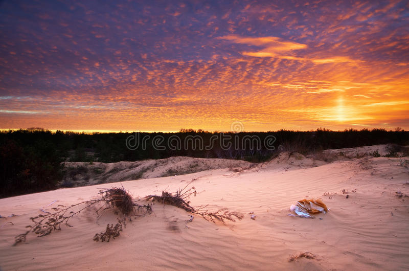 Paisaje hermoso en desierto fotografía de archivo libre de regalías