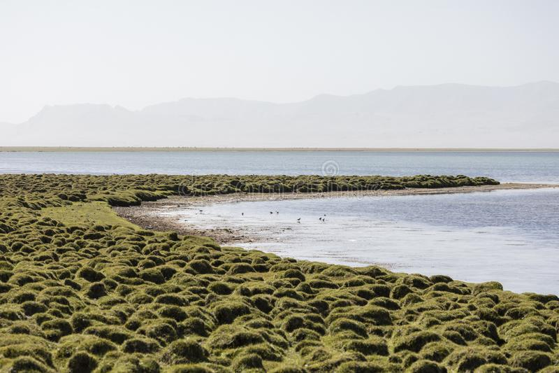 Paisaje hermoso en el lago Kul de la canción fotografía de archivo libre de regalías